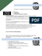 Edema Cerebral Informe 2015