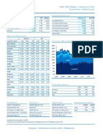 2010-02 February Monthly Report Investor