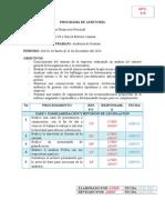 Programa de Auditoría Cfn