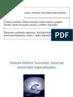 7 y 8-Neuro-Sist. Límbico y Corteza Cerebral