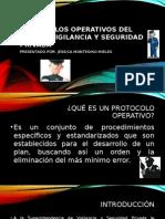 Protocolos Operativos Del Sector Vigilancia