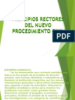 1.- Principios Rectores Del Nuevo Procedimiento Civil