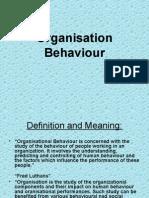 organisationbehaviour-130322225250-phpapp02