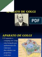 Aparato de Golgi y Lisosomas