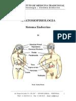 Sistema Endócrino - Caderno 15.doc