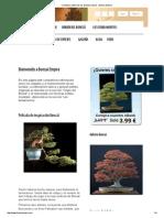 Cuidado y Cultivo de Los Árboles Bonsái - Bonsai Empire