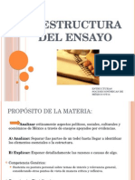 0 Estructura Del Ensayo (2)