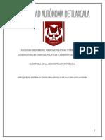 Enfoque de Sistemas en El Desarrollo de Las Organizaciones (2)