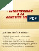 INTRODUCCIÓN  A  LA GENÉTICA  MÉDICA
