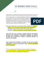 Cedulario Bienes 2006 Civil2 Pyr1