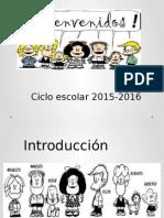 Fase Intensiva Cte 2015-2016