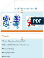 Separation of Proteins Part II-1