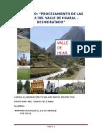 Proyecto de Procesamiento de Las Frutas Del Valle de Huaral