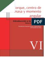 Torque, Centro de Masa y Momento Angular