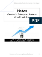 267719342 Chapter 3 Enterprise Business Growth and Size