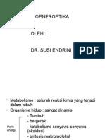 Kuliah - Biokim - Bioenergetika (Printed)