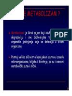 Bioloski fakultet Beograd Fotosinteza I