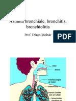 Asthmabronchialebronchitisbronchiolitis.ppt