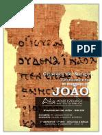 Citações de João.pdf