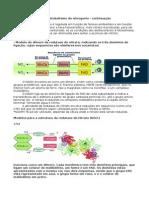 Assimilação do Nitrato e do Amonio