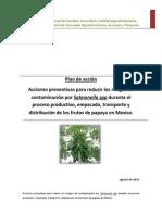 Plan de Accion Papaya Mexico 021
