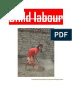 15788083 Child Labour