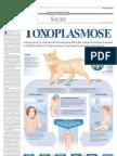 Saude toxoplasmose