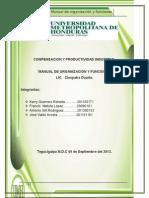 compensacion informe Manual organizacion y funciones..docx