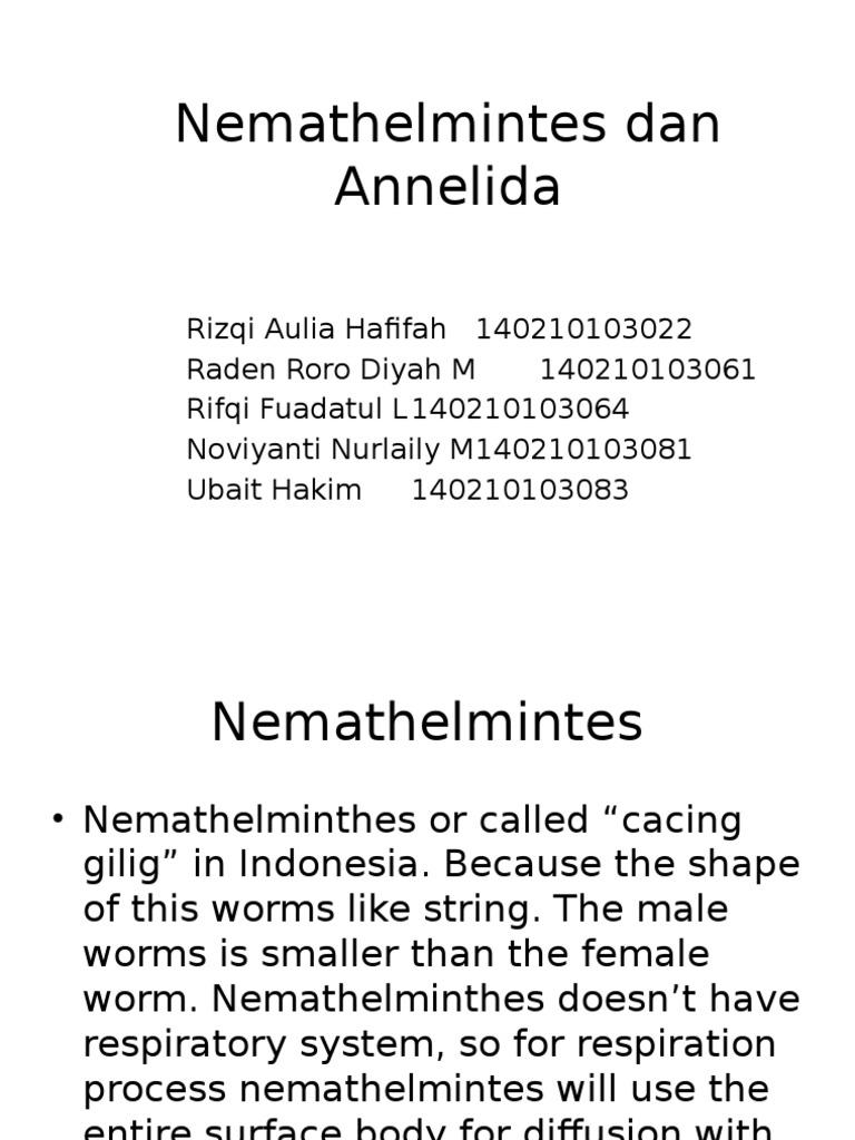 Osztályozza a nemathelminthes dan annelida