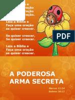 A Poderosa Arma Secreta