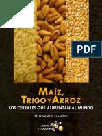 Maíz, trigo y arroz