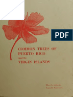 Common Trees of Puerto