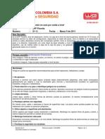 Alerta de Seguridad Golpe en Cara Por Caída a Nivel FLO 05-03-2011