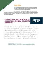 Impactos Ambientais.doc fotos.doc