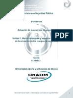 Unidad 1. Marco Conceptual y Aspectos Generales de La Actuacion de Los Cuerpos de Seguridad
