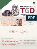 TGD presentación