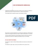 Sistemas de Información Gerencial.temas.doc