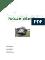 Avicultura - Avestruz - Producción Avestruz