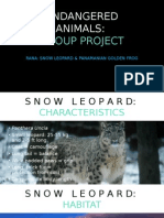 endangered animals group project