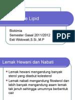 anabolisme lipit ppt