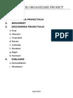 Format de Organizare Proiect
