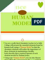 Human model.pptx