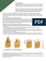 Makalah Endodontik