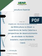 Aspectos Técnicos e Econômicos Da Mitilicultura No Brasil. a Experiencia de SC