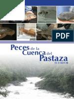 PecesComunesdelaCuencaPastaza Ecuador