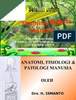 Anatomi manusia
