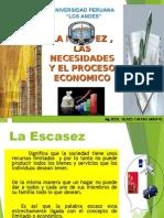 01 - Escases, Necesidades Proceso Economico