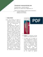 Informe Extraccion Del ADN