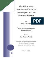 Identificación y Caracterización de Un Homólogo a FixL en Brucella Abortus Tesis