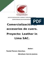 FORMULACION DE PROYECTOS..docx